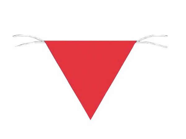 カヤック用安全旗はAmazonで購入