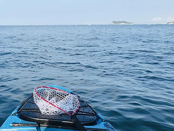 湘南で釣り