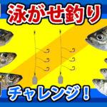 泳がせ釣り(飲ませ釣り)に挑戦!(1)