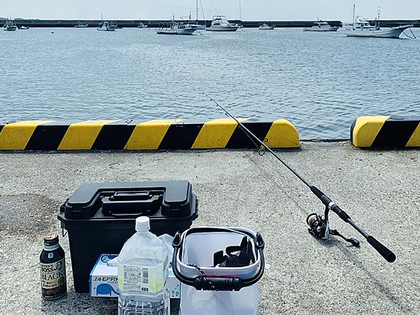 佐島漁港で初めての釣り