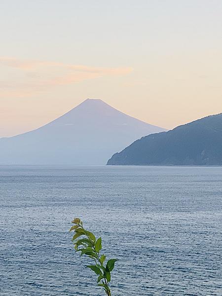 富士山に感動