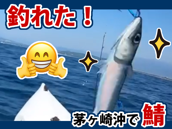 茅ヶ崎沖カヤックから鯖が釣れた