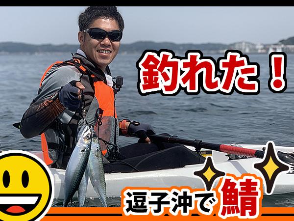 逗子沖の海でカヤックから鯖が釣れた